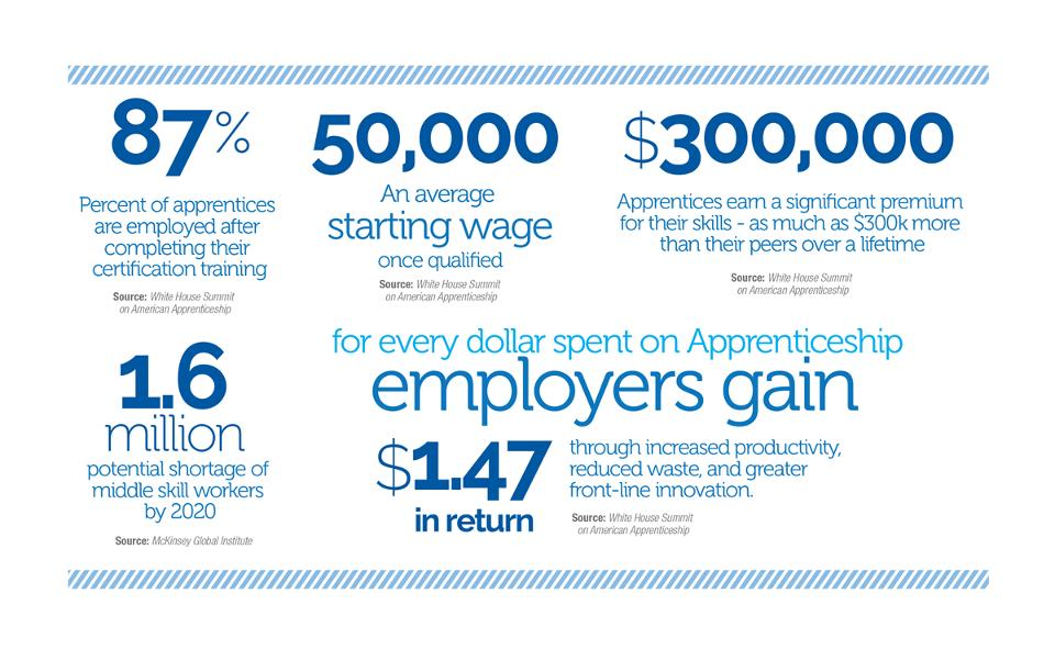 Investing in Apprenticeship Inforgraph - Courtesy: Nicholas Wyman